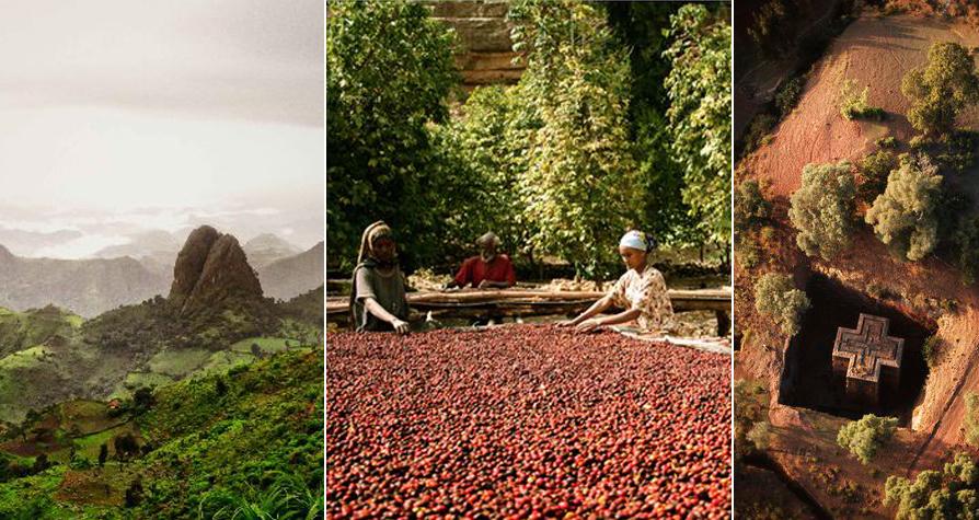 ÄTHIOPISCHE KAFFEEZEREMONIE ODER SLOW COFFEE MOVEMENT?